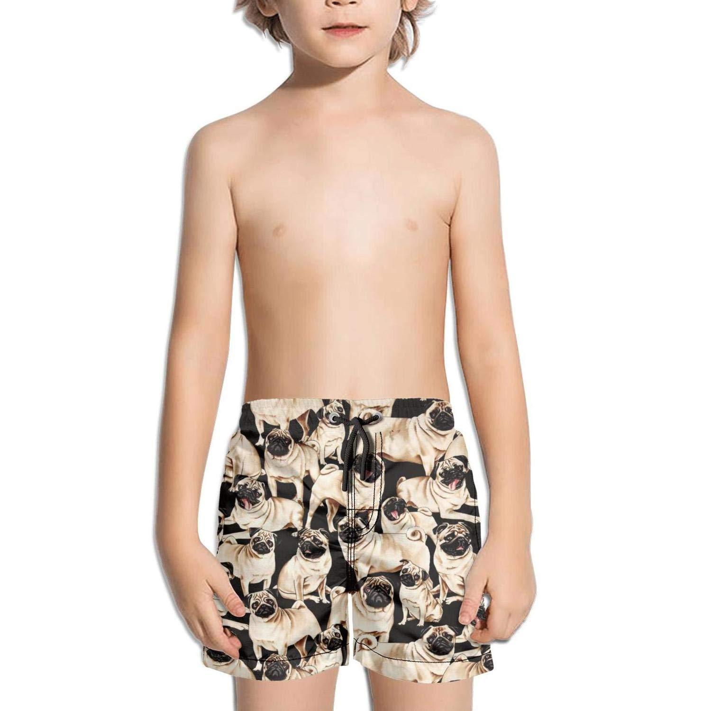 lidongsing French Bulldogs Blue Kids Boys Fast Drying Beach Swim Trunks Pants