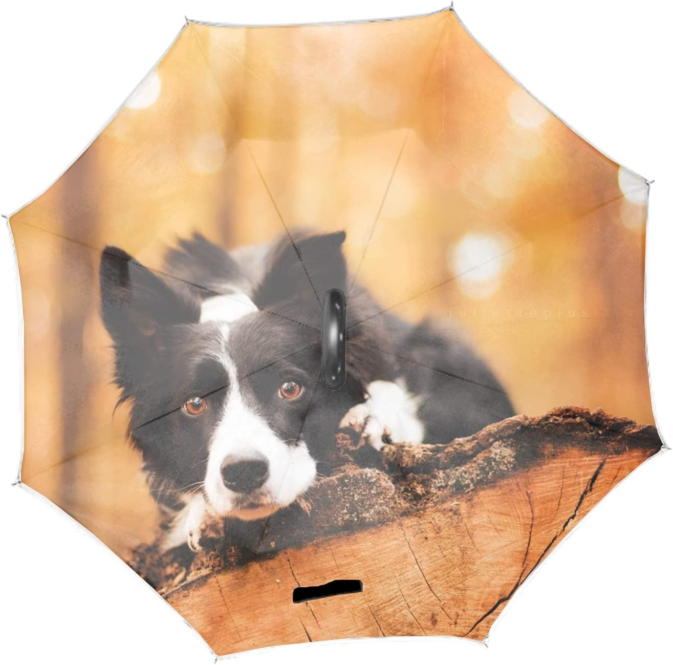 Forest Border Collie Double Layer Inverted Umbrella Self Stand Upside-Down Rain Protection Car Reverse Umbrellas