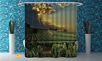 Cool Shower Curtain Winery DecorSunset Over The Vineyards Of South France
