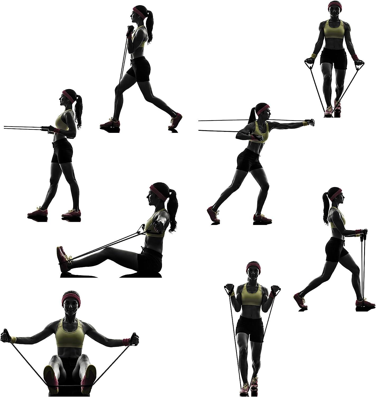 REEHUT Bandas Elásticas de Entrenamiento, Bandas de Resistencia para Fitness Cable de Ejercicio de Entrenamiento para Tonificación Muscular, Equipo de ...