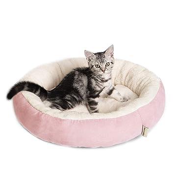 Amazon.com: Tempcore Cama para gatos de interior gris, cama ...