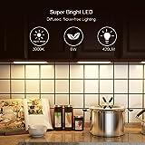 DEWENWILS 12 Inch LED Under Cabinet Lighting Plug