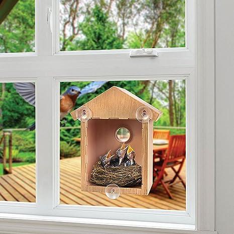 Autone Diy Wooden Window Bird Feeder House With Suckers