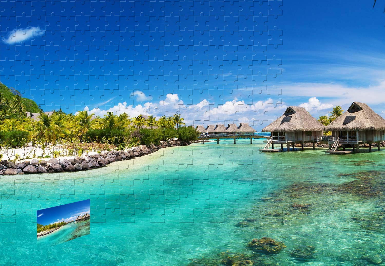 割引クーポン PigBangbang、20.6 - X B07HY6RCRR 15.1インチ、プレミアムバスウッド大型サイズ - 南海の海のヤシの家 - - 500ピースジグソーパズル B07HY6RCRR, 表札工房 あかり:9c77c06c --- sinefi.org.br