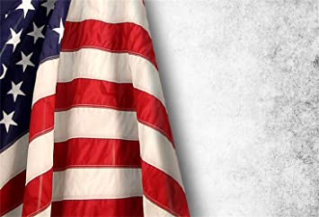 Backdrop 8x6.5FT Polyester Photography Background USA Flag Background American Symbol Fourth of July Independence Day Democracy Patriotism Wedding Holiday Party Ceremony Photo Backdrop Studio