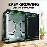 240 x 120 x 200cm Greenfingers Grow Tents Hydroponics Plant Tarps Shelves Kit