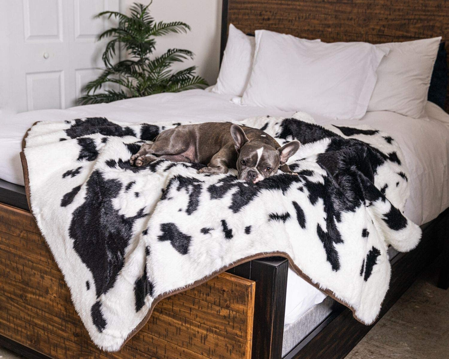 Treat A Dog PupProtector Waterproof Dog Blanket - Soft Plush Throw Protects Bed, Couch, or Car from Spills, Stains, Scratching, or Pet Fur - Machine Washable (Black Faux Cowhide)