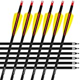 12Pcs/lot Misayar 30 Inch Carbon Arrows Fletched 3 Inch Vane with Field Points for Recurve Compound Bow Targeting or Hunting