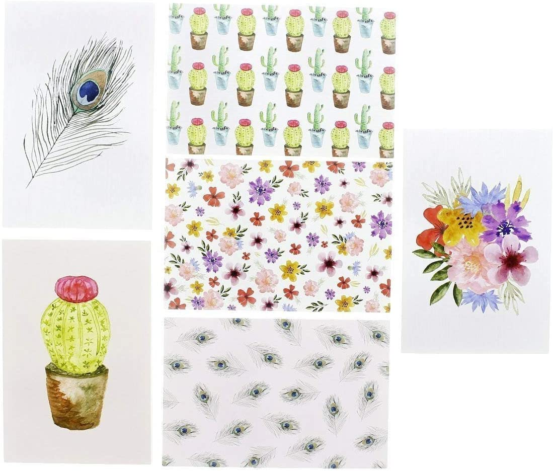 48-Pack Greeting Cards Blank Note with Envelopes Wedding Bulk Box Set Birthdays Watercolor Cactus /& Floral Designs for All Occasions 4 x 6 inches