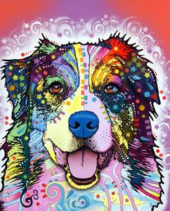 Dean Russo Art — Australian Shepherd PRINT