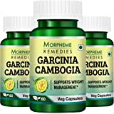 Morpheme Remedies Garcinia Cambogia Extract 60 Veg Caps for Weight Management - 3 Combo Pack