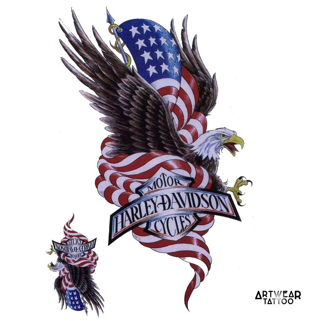 75aa29826 Amazon.com : Temporary Tattoo Harley Davidson American Eagle Tattoo -  ArtWear Tattoo - B0386 M by ArtWear Tattoo : Beauty