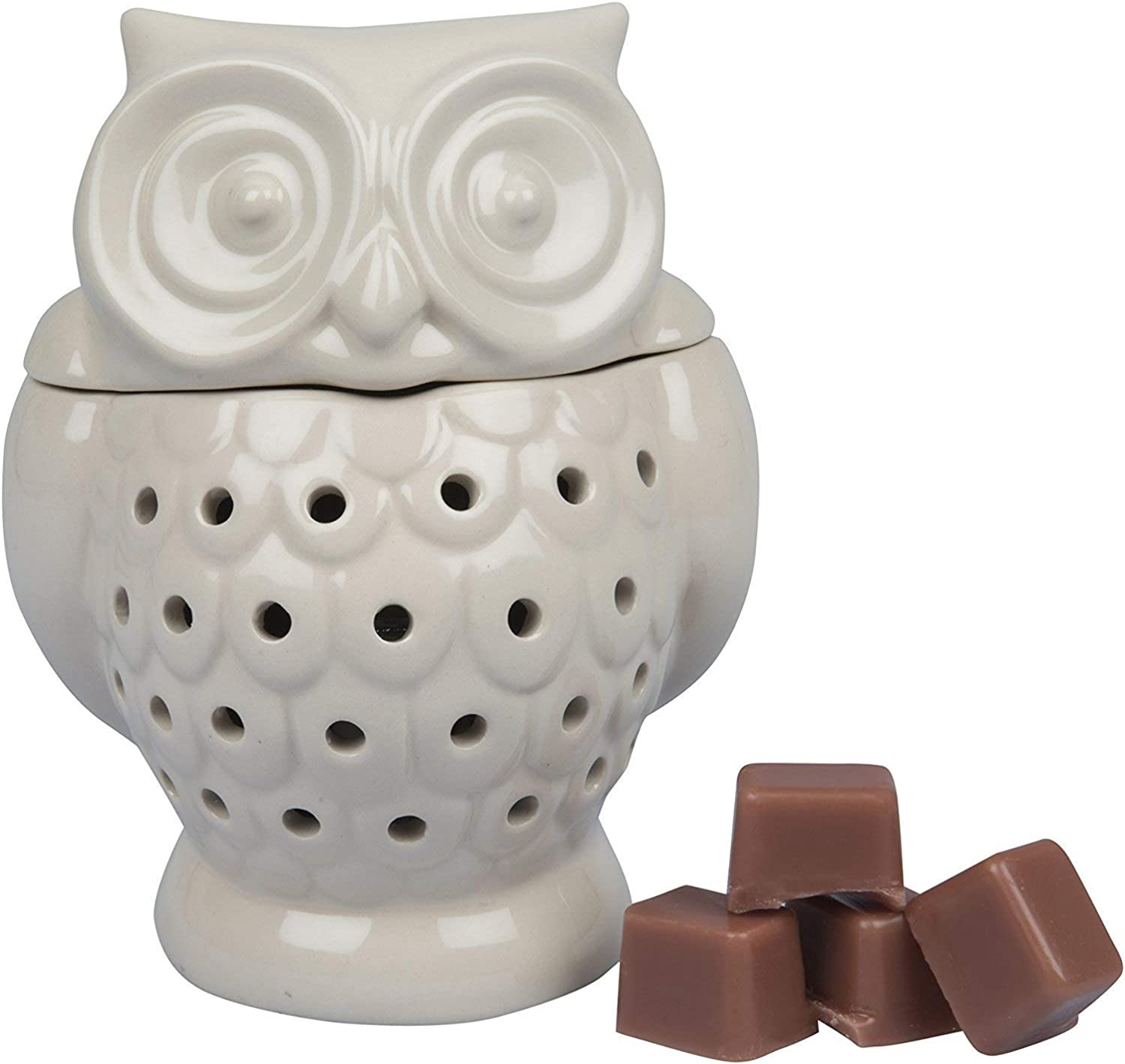 Deco Electric Owl Candle Warmer, Wax & Tart Warmer for Indoor Decor, Includes 4 Wax Cubes and Halogen Bulb(4.5