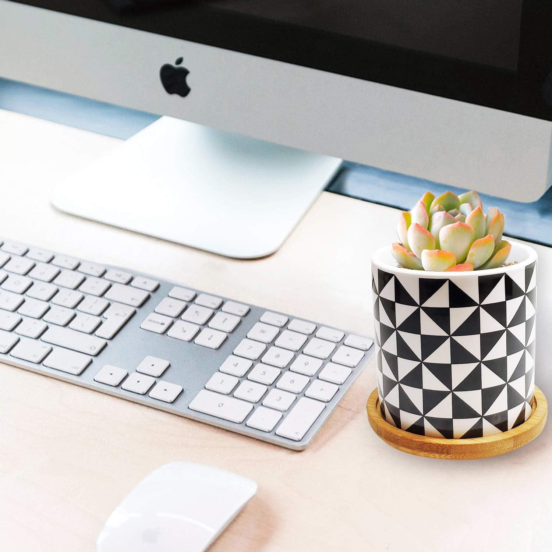 Dorozee in ceramica confezione da 3 motivo mandala Vasi per piante grasse ideali per cactus e piante di piccole dimensioni