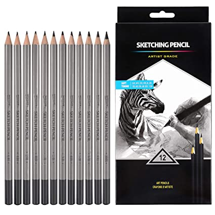 Professional Drawing Sketching Pencil Set - 12 Pieces Drawing Pencils 10B,  8B, 6B, 5B, 4B, 3B, 2B, B, HB, 2H, 4H, 6H Graphite Pencils for Beginners &