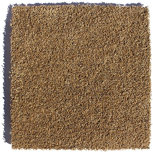 Zen Afterglow 24 in. x 24 in. Residential Carpet...