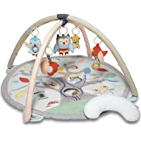 Skip Hop Tree Top Friends Activity Gym, Grey/Pastel