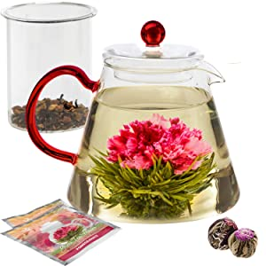 Teabloom Amore Glass Teapot Gift Set – Stovetop Safe Glass Teapot with Removable Glass Infuser – 4-6 Tea Cups (34 oz) – Two Blooming Tea Flowers Included