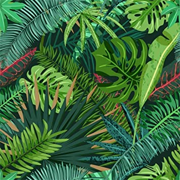 Amazon Com Lfeey 8x8ft Tropical Leaves Backdrop Vinyl Baby Shower Photo Booth Hawaiian Luau Summer Camp Party Birthday Cloth Background Photography Video Drapes Photo Studio Props Camera Photo Find the best free stock images about tropical leaves. lfeey 8x8ft tropical leaves backdrop