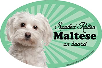 Round Dog Breed Car Magnet Boxer Attitude Bumper Sticker Decal