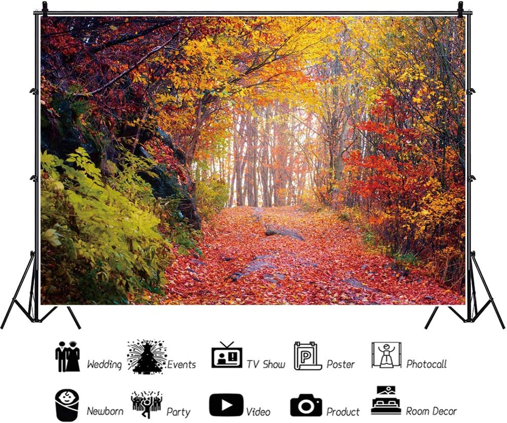 Yeele Colorful Autumn Forest Backdrop 10x6.5ft October Nature Photography Background Adult Artistic Portrait YouTube Live Wedding Portrait Work Event Room Decor Photoshoot Banner Photo Booth Props