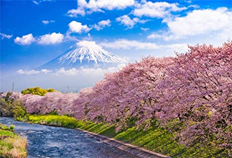 Amazon Com Laeacco Spring Mount Fuji Landscape 10x7ft
