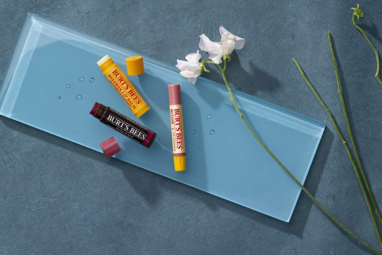 Burt Bees 100% Natural Origin Moisturizing Lip Balm - Our Review