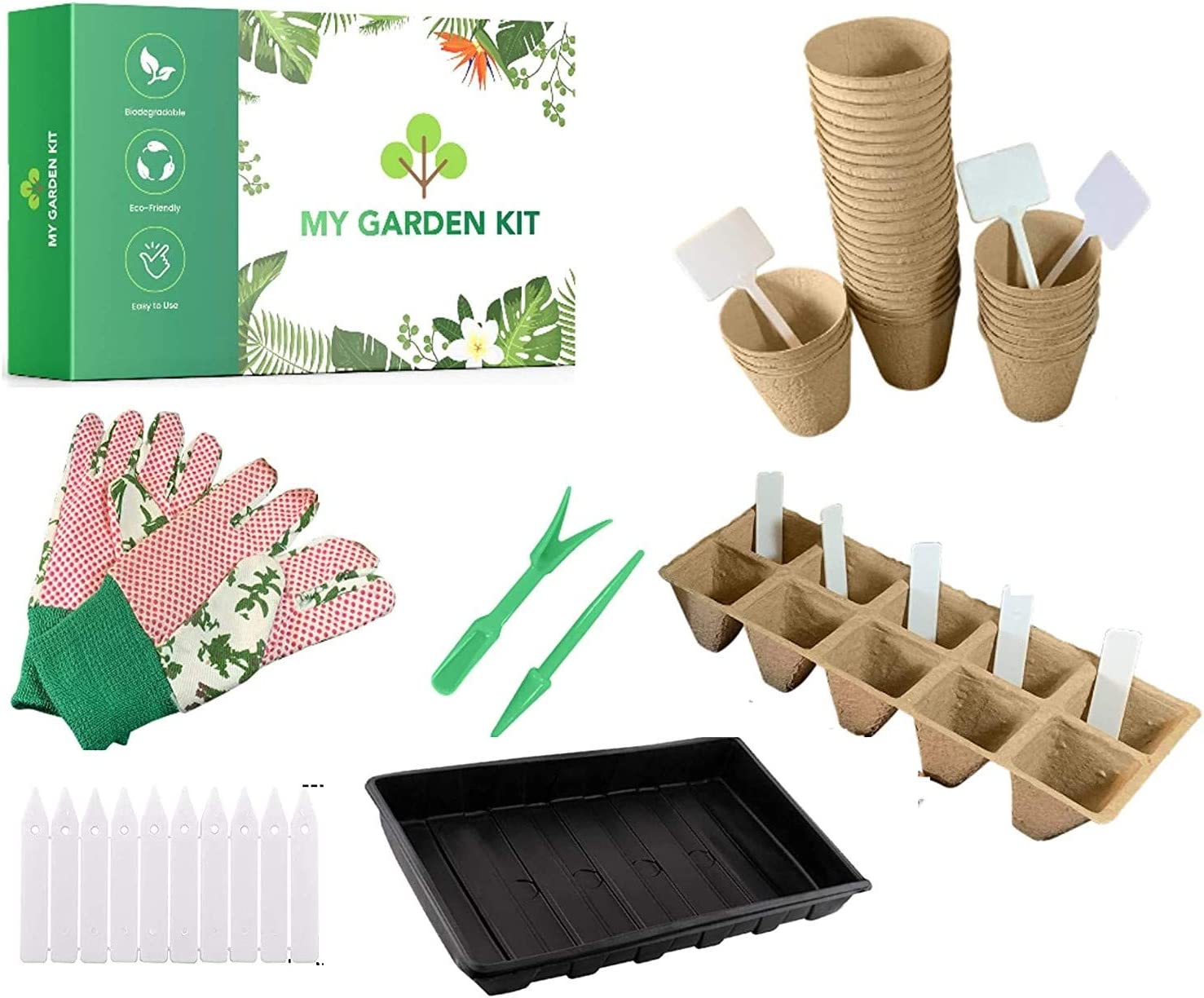 Seed Starter - 40 Peat Pots a Perfect Seed Starter Peat Pots Kit Organic Plant Starter for Flowers, Vegetable Indoor and Outdoor Gardening, Germination Tray and Nursery pots