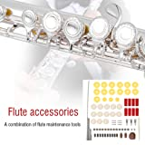 Flute Repair Tools Kit with 16pcs Open Hole Sound