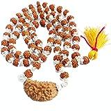 Himalaya Rudraksh Anusandhan Kendra 1 Mukhi Silver Rudrakshas Mala Cappings for Men and Women