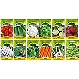 12 varietà | Assortimento di semi di ortaggi | adatto per principianti | miscela robusta | ora prezzo speciale invernale