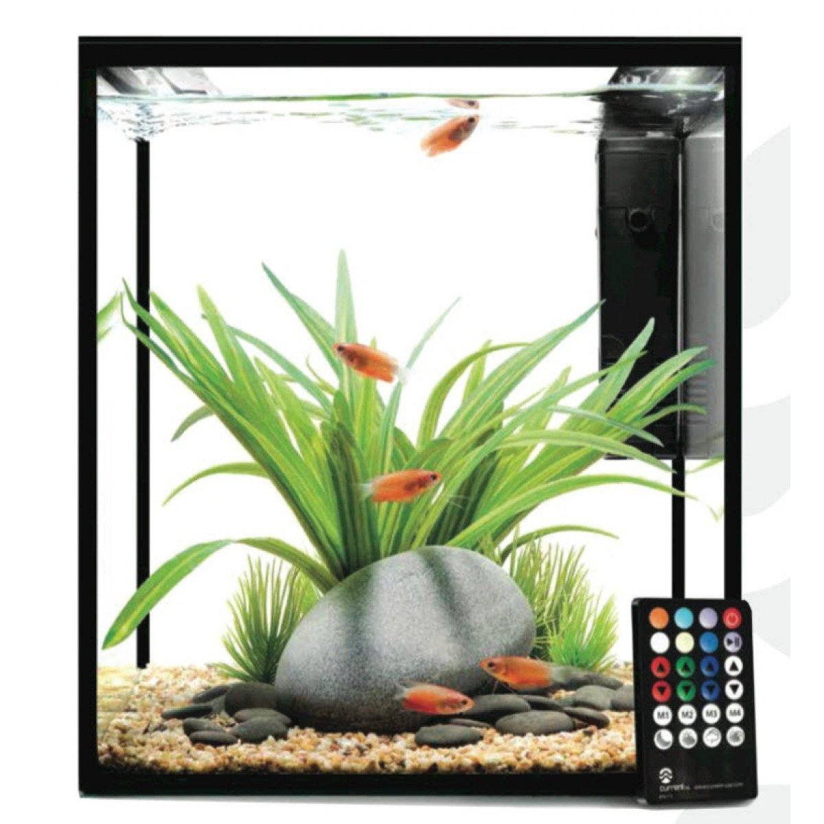 Fish aquarium just dial - Fish Aquarium Just Dial