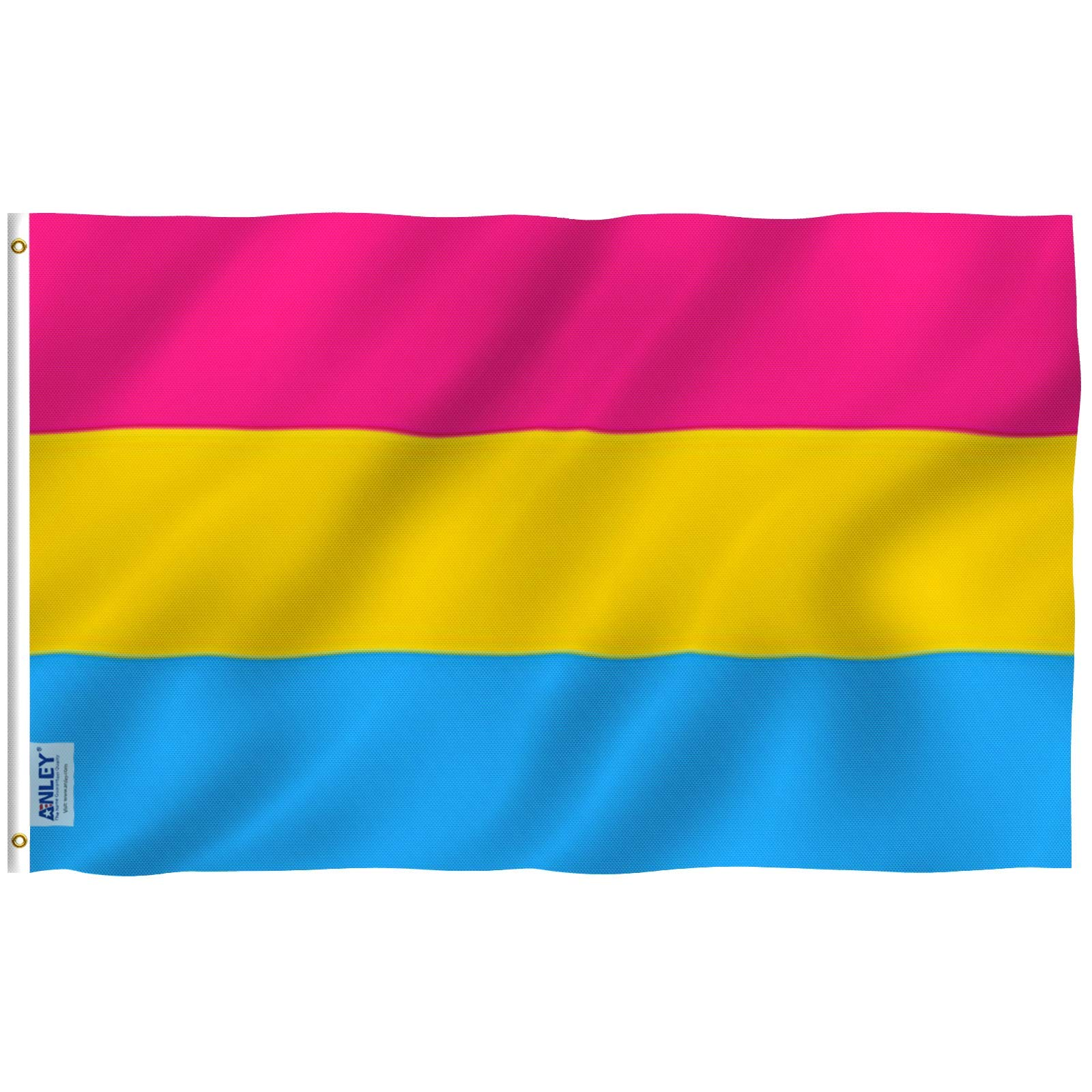 Anley Fly Breeze 3x5 Foot Pansexual Pride Flag - Vivid Color and Fade Proof - Canvas Header and Double Stitched - Omnisexual LGBT Flags Polyester with Brass Grommets 3 X 5 Ft