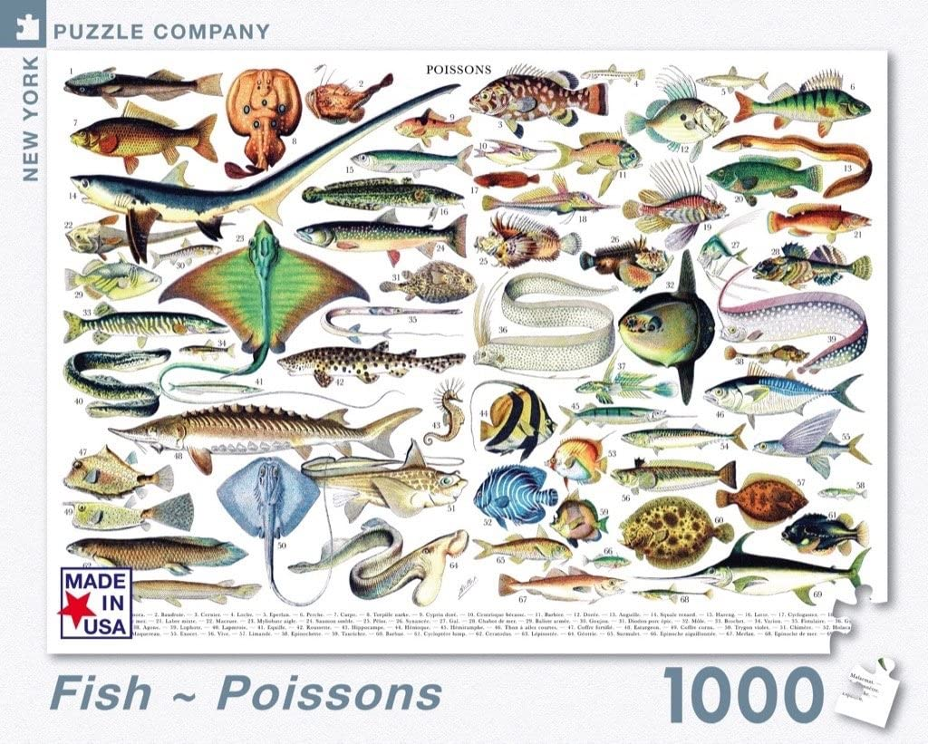 New York Puzzle Company - Vintage Images Fish ~ Poissons - 1000 Piece Jigsaw Puzzle