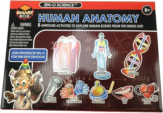 - BUKI France Science et vie human body Le corps humain