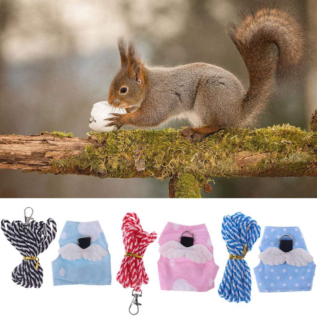 Vivianu - Arnés para mascotas con correa, diseño de hámster y ...