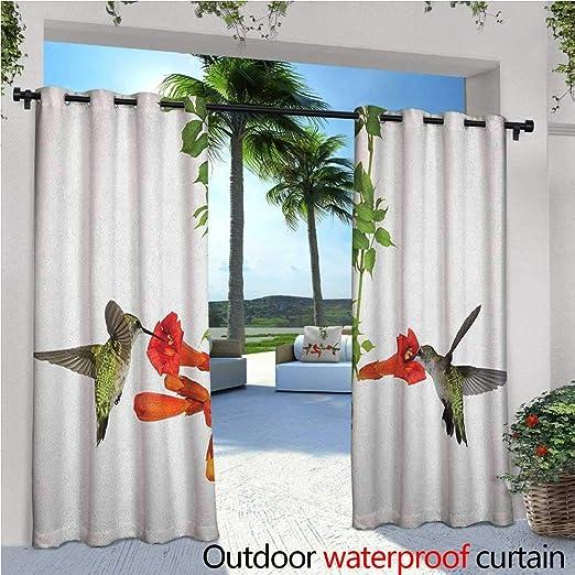 Hummingbird Cortina de privacidad para exteriores, para pérgola ...