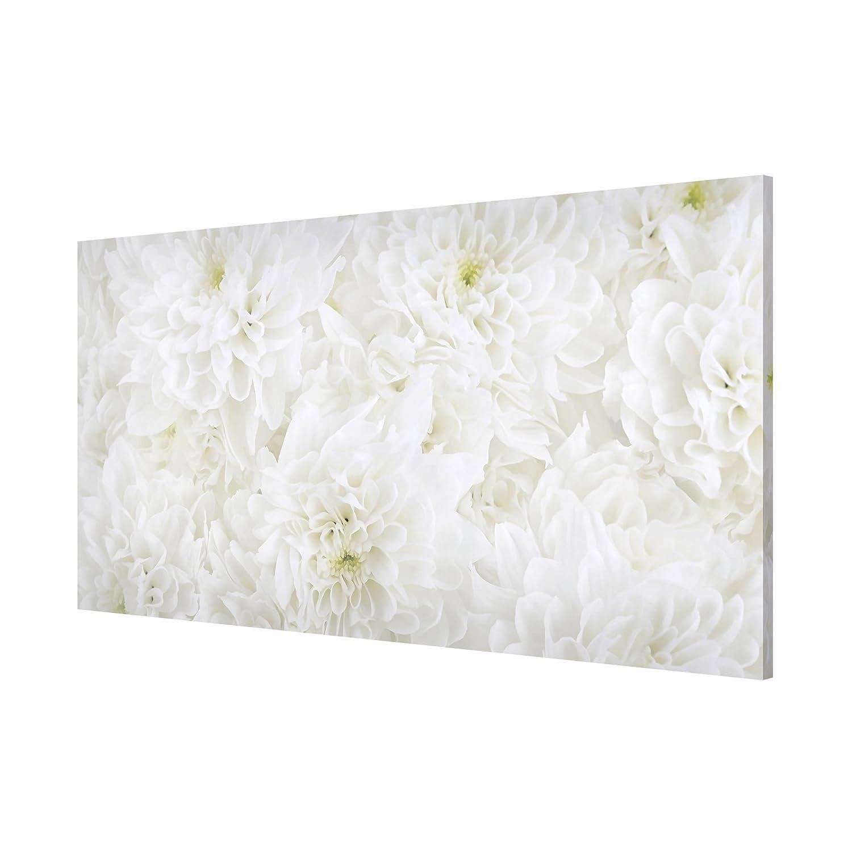 Bilderwelten Lavagna magnetica - Dahlias Flower Sea White - Panorama Formato orizzontale quadro pittura bacheca magnetica pannello magnetico calamite da parete ufficio cucina, Dimensione: 37cm x 78cm PPS. Imaging GmbH