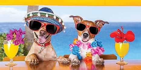 UniqueTowel Toalla de baño Ducha - Perros Divertidos con cócteles en Vacaciones en el Bar de
