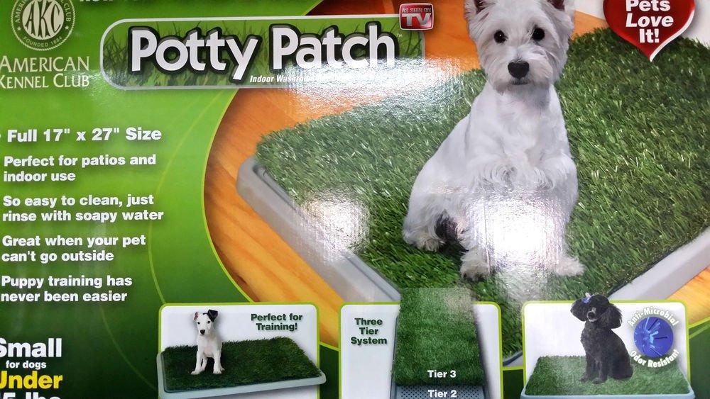 Dobo® yacija MAXI inodoro para perros y gatos con cachorros de tamaño de pasto sintética absorbente Potty Ideal para entrenamiento de red: Amazon.es: Jardín