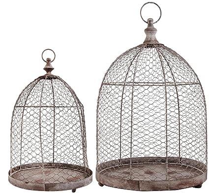 Amazon.com : Esschert Design Aged Metal Wire Cloche, Set of 2 ...
