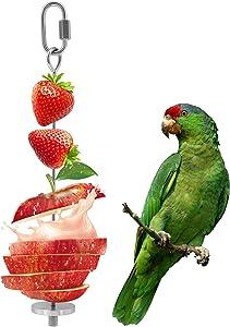 YIQUAN Bird Food Holder, Bird Feeders, Stainless Steel Parrot Fruit Vegetable Stick Holder, Foraging Toy, Bird Treat Skewer
