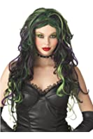 California Costumes Wicked Witch Wig