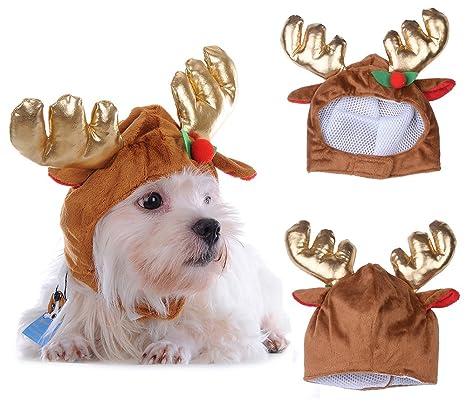 yunt disfraz de gato perro Milu ciervos de Navidad disfraz de ...