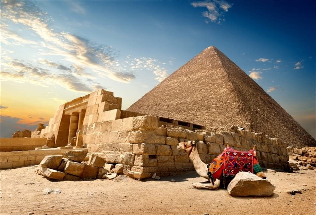 AOFOTO 10x7ft Egyptian Pyramid Backdrop Desert Camel Photography ...