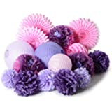 paper jazz Dual Color Pompom Flower Lantern Paper Pinwheel Fan Party Decoration kit for Wedding Birthday Bridal Shower Baby Shower Home Store Decoration (Purple lavenda Pink)