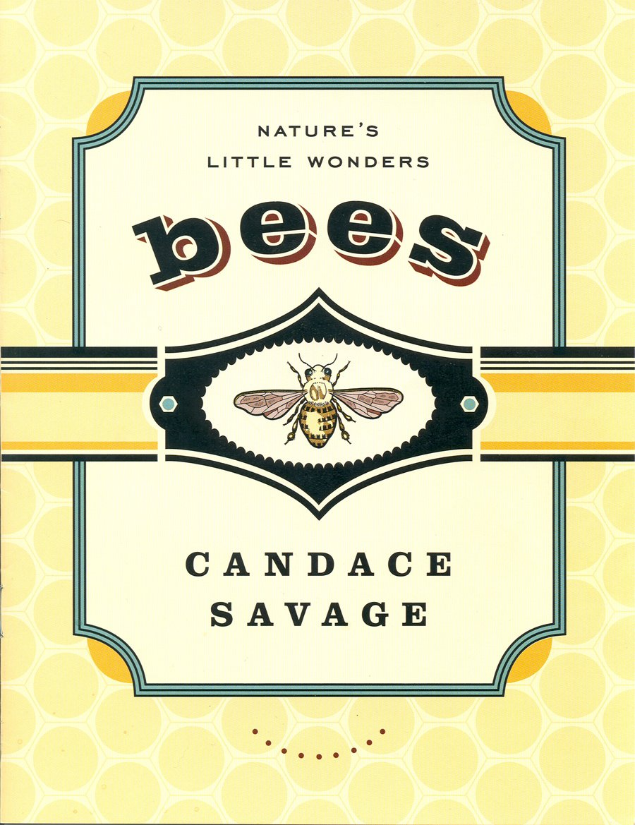 Bees: Nature's Little Wonders