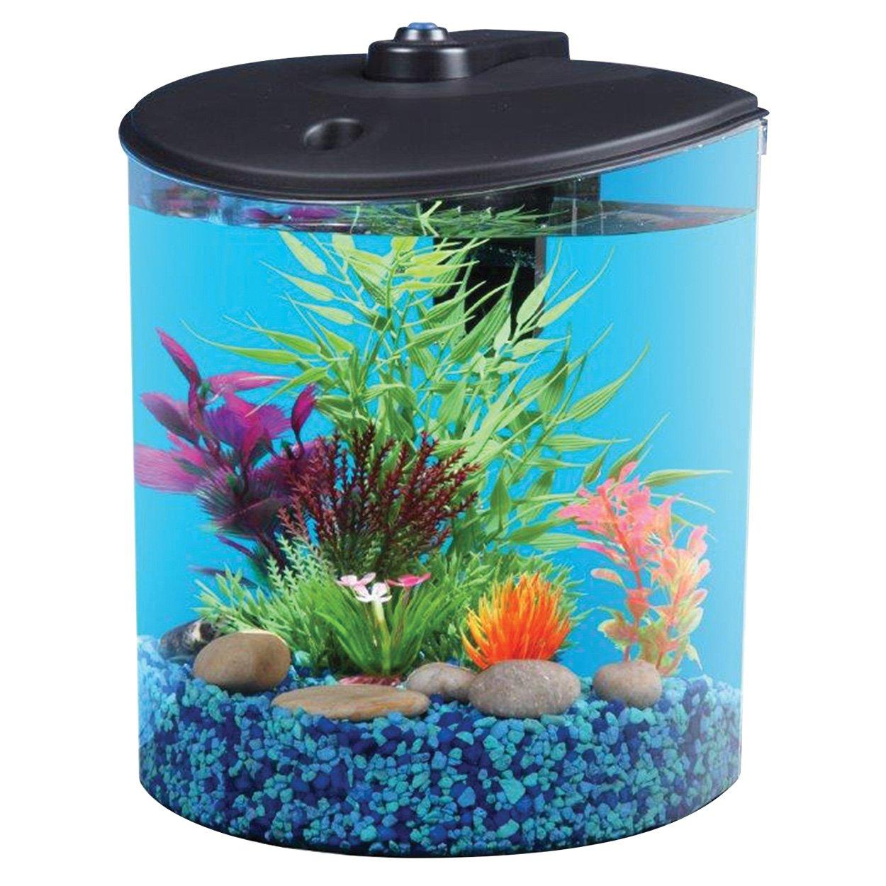 Kollercraft API 5897 180 176 View Aquarium Kit, 1.5 Gallon
