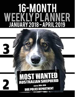 2018-2019 Weekly Planner - Most Wanted Abyssinian: Daily