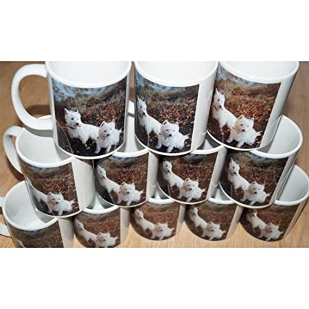 photograph relating to Printable Mugs Wholesale referred to as 144 Posted individualized marketing mugs. The vast majority obtain